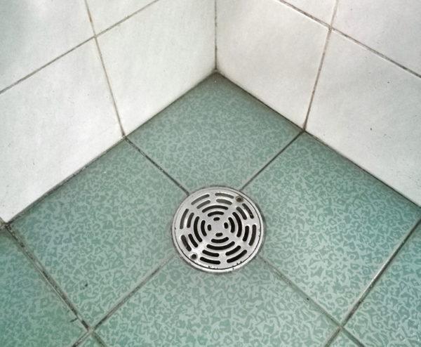 Грибковый налет на швах между плитками в ванной