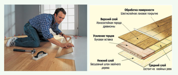Структура ламинатной доски