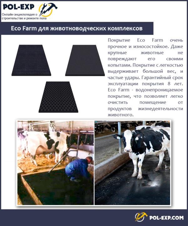 Eco Farm для животноводческих комплексов